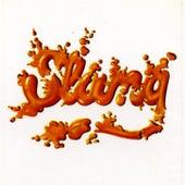 Slang by Slang