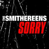 Sorry de The Smithereens