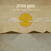 I Can See Clearly Now (Acoustic) de Joshua Radin
