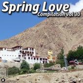 SPRING LOVE COMPILATION VOL 30 de Tina Jackson