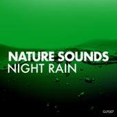 Night Rain by Nature Sounds (1)