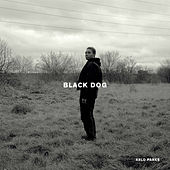 Black Dog by Arlo Parks