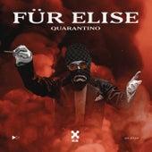 Für Elise de Quarantino