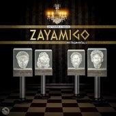 ZAYAMIGO INSTRUMENTALS by Zaytoven