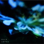 Lotus von Ell3