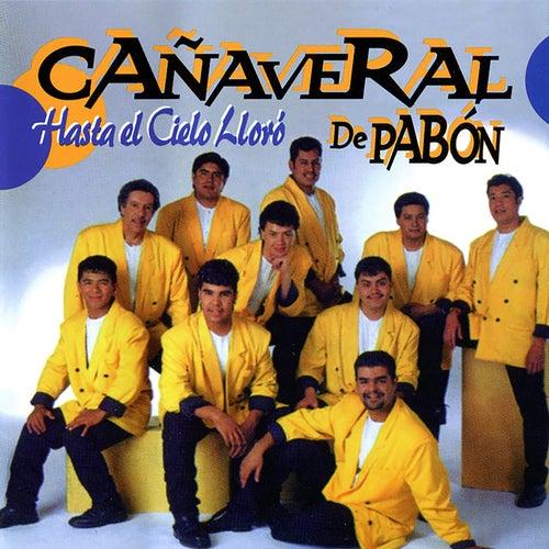 Hasta El Cielo Lloró by Cañaveral De Pabon