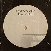 Rise of Birds de Bruno Costa