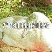 27 Medicinal Storms by Rain Sounds and White Noise