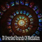 70 Granted Sounds of Meditation by White Noise Research (1)