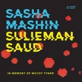 Sulieman Saud by Sasha Mashin