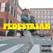 Pedestrian de Ant Saunders