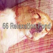 66 Relaxation Pond de Relaxing Music Therapy