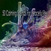 50 Calming Sounds for Peaceful Rest de Relajacion Del Mar