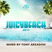 Juicy Beach 2011 de Various Artists