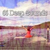 66 Deep Sounds de Music For Meditation