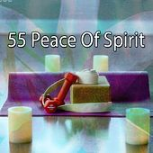 55 Peace of Spirit de Massage Therapy Music