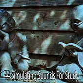 44 Simulating Sounds for Study by White Noise Research (1)