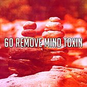 60 Remove Mind Toxin de Yoga Music
