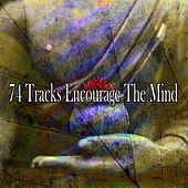 74 Tracks Encourage the Mind de Massage Tribe