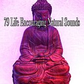 79 Life Encouraging Natural Sounds de Meditación Música Ambiente