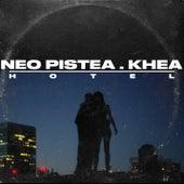 Hotel de Neo Pistea