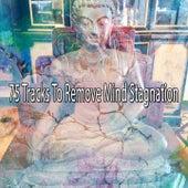 75 Tracks to Remove Mind Stagnation von massage