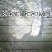80 Sounds for Focussing de Yoga Namaste