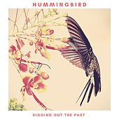 Digging Out the Past by The Hummingbird