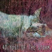 40 Host of the Storm by Rain Sounds and White Noise