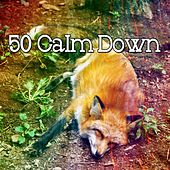 50 Calm Down by Ocean Sounds Collection (1)