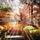 44 Auras for a Heavy Study de Japanese Relaxation and Meditation (1)