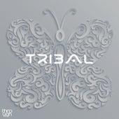 Tribal de Various Artists
