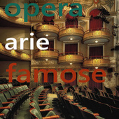 Opera Arie Famose di Various Artists