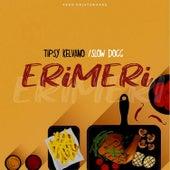 Erimeri (feat. Slowdog) de Tipsy Kelvano
