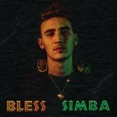 Simba von Bless