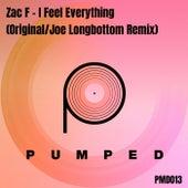I Feel Everything de Zac F
