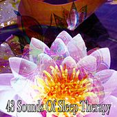 43 Sounds of Sleep Therapy de Yoga Music