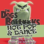The Dogs BollXXks Hot Pop & Dance Megamix Vol. 2 by DJ Dee Bee