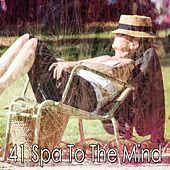 41 Spa to the Mind by Best Relaxing SPA Music