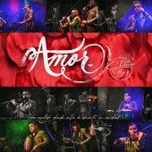 Amor (Cover) de La Charanga del Sur
