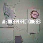 All These Perfect Crosses von Craig Finn