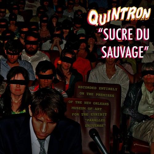 Sucre Du Sauvage by Quintron