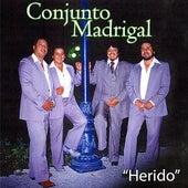 Herido by Conjunto Madrigal