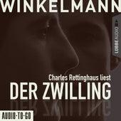 Der Zwilling (Kurzgeschichte) von Andreas Winkelmann