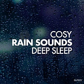 Cosy Rain Sounds For Deep Sleep by Rain Sounds (2)