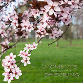 Moments Of Spring by Mercuzio Pianist