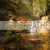 Just Breathe by Nature Sounds (1)