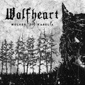 Hail Of Steel von Wolfheart