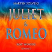 Juliet & Romeo (Remixes) von Martin Solveig