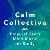 Calm Concentration Pt. 1 de The Calm Collective